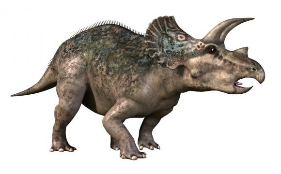 wonderbook-dinosaures-1